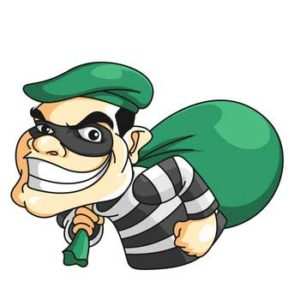 Cyber-security burglar